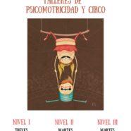 Psicomotricidad y Circo