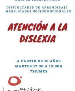 Atención a la Dislexia (Nivel III)